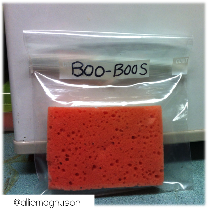 Keep a wet sponge in a baggie in the fridge for when students need an ice pack.