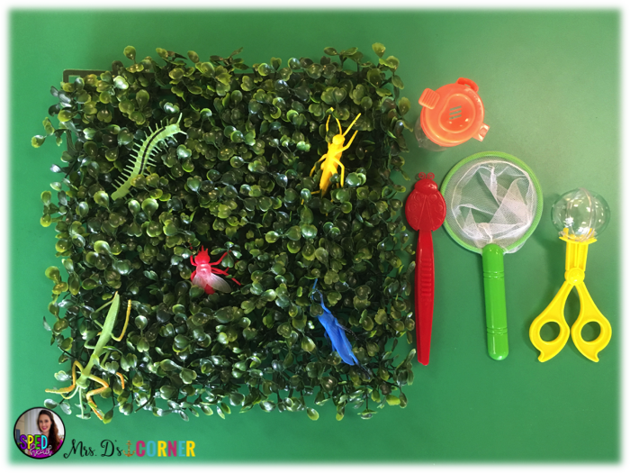 Finger Gyms Fine Motor Exercises. Exercise little fingers each day with a specific classroom rotation to practice fine motor development using everyday objects that you already have in your house and or classroom. The Sped Connection Guest Blogger at Mrs. D's Corner.
